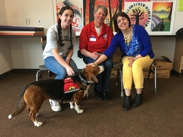 Greta the therapy dog at MHS